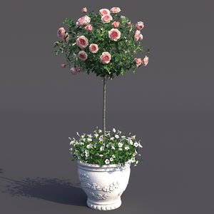 rose bush pot 2 3D model
