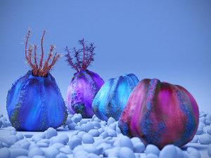 3D sea apple