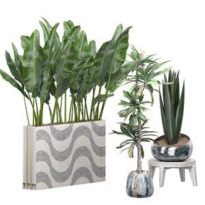 potted plants set 48 3D model
