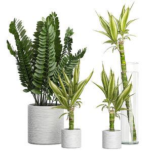 3D potted plants set 49 model
