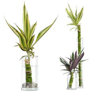 potted plants set 50 3D model