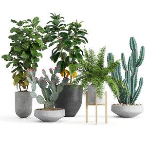 3D model set indoor plants
