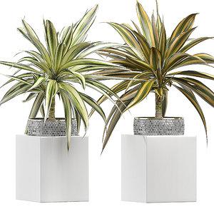 3D potted plants set 52