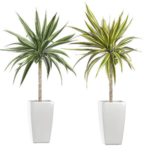 potted plants set 53 model