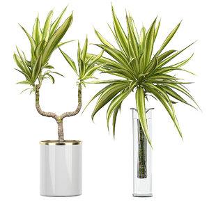 potted plants set 54 3D model