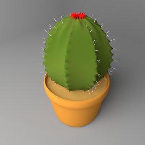 3D cactus plant 3