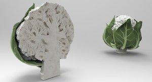 cauliflower food vegetable 3D model