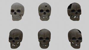 3D skull pbr materials skins
