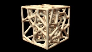 3D model sponge bone structure