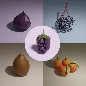 elderberry fig ximenia 3D model