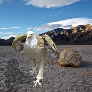 3D model white american bald eagle