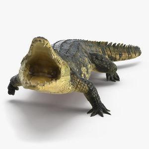 3D model crocodile attack animal rigged