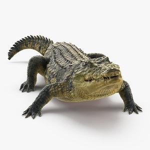 crocodile eating animal rigged 3D model