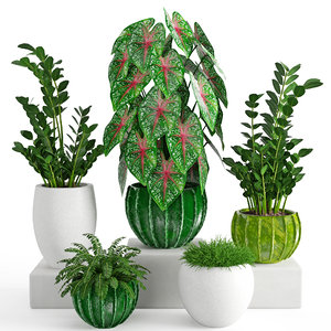 3D houseplant model