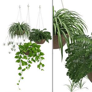 3D houseplant 43