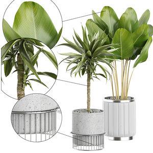 potted plants 62 3D model
