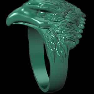 3D eagle ring model