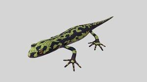 3D marblet newt model