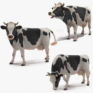 cow farm animal 3D model