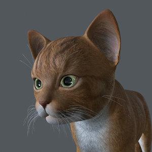 kitten cat 3D