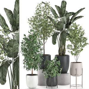 3D decorative plants interior pots