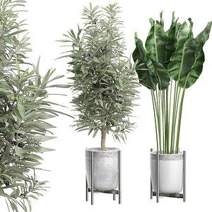 3D potted plants 65