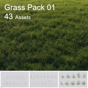 3D model grass vol01