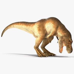 3D tyrannosaurus rex eating animal