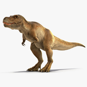 3D tyrannosaurus rex waiting rigged model