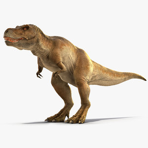 3D tyrannosaurus rex walking animal