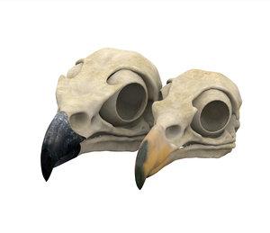 eagle skull 3D model