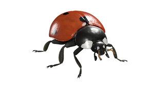 ladybug animations 3D model