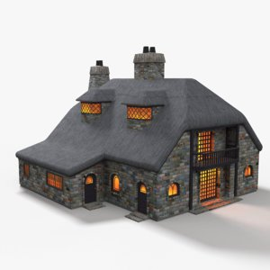 3D cottage thatched roof