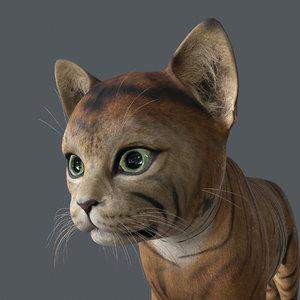 3D kitten cat model
