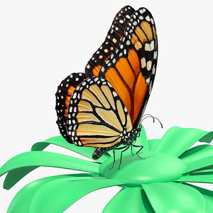 3D monarch butterfly collects nectar