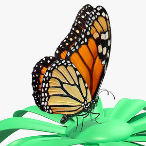 3D monarch butterfly sits swinging