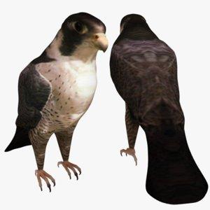 falcon ready model