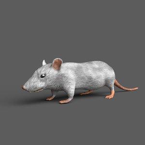 mouse pbr 3D model