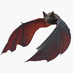 3d vampire bat