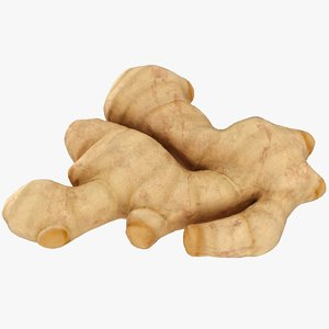 3D model realistic raw ginger root