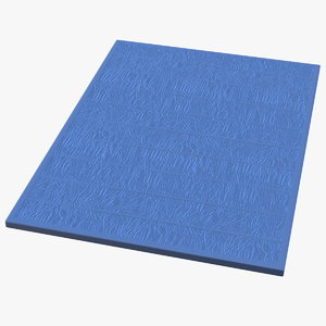 large flooring sports mat 3D model