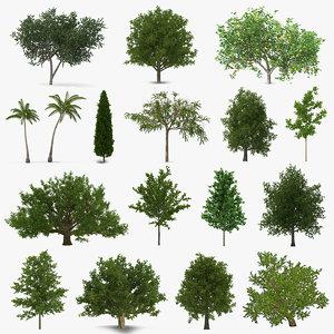 summer trees 5 model