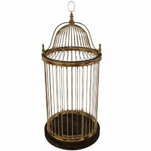 3D bird s cage