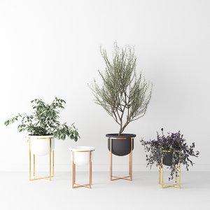 interior plant 3D model