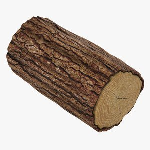 3D model wooden log 04
