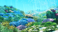 3D Cartoon Underwater Coral Reef Habitat Ocean Version 2
