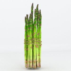 3D asparagus model