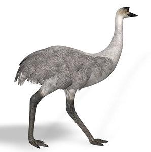 3D emu rigged
