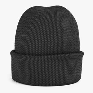 winter hat 1 3D