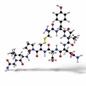 3D oxytocin molecule modeled